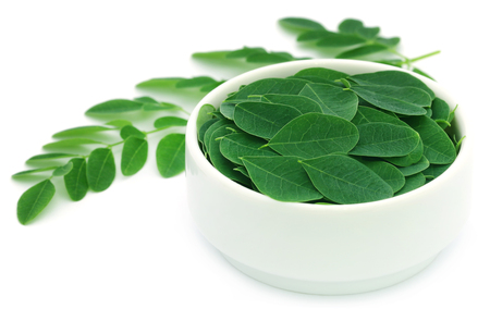 marango: Edible moringa leaves in a white bowl