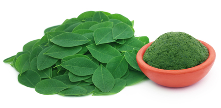 sajna: Edible moringa leaves with ground paste in a pottery Stock Photo