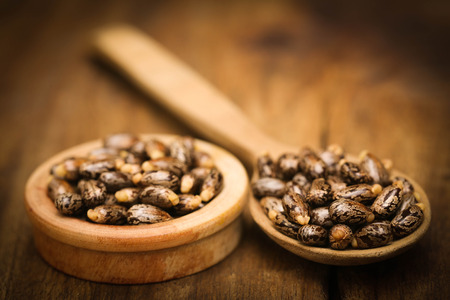 triglycerides: Castor beans in wooden spoon and bowl
