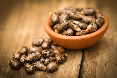 triglycerides: Castor beans in bowl on wooden surface