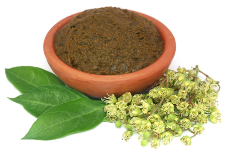ayurvedic: Ayurvedic henna leaves with flowers and paste over white background Stock Photo