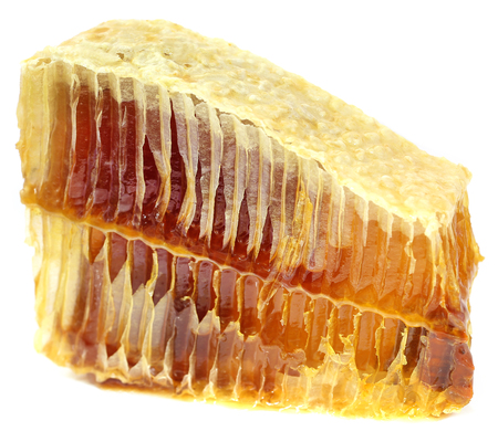 honey comb: Honey comb over white background