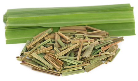 lemongrass: Lemongrass over white background Stock Photo