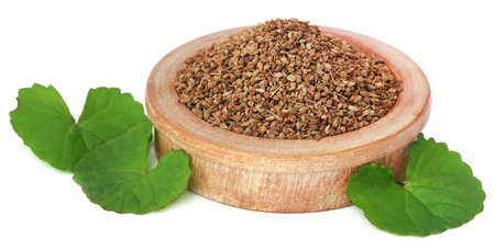 ajwain: Medicinal combination of ajwain seeds in a wooden bowl with thankuni leaves
