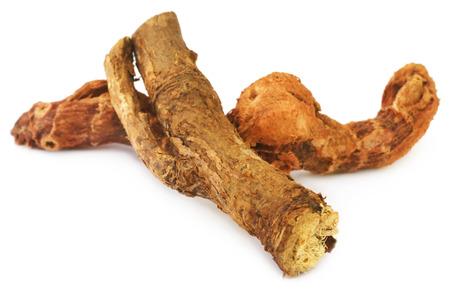 calamus: Acorus calamus or medicinal Sweet flag over white background Stock Photo