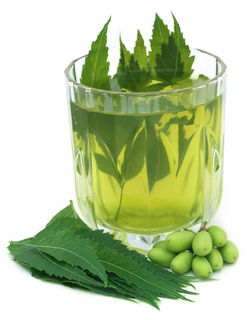 extract: Medicinal neem extract with fruits and leaves over white background