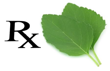 Prescribed tulsi leaf as herbal medicine over white background