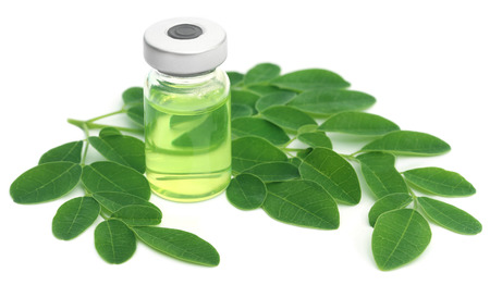 malunggay: Moringa leaves with extract in a vial over white background