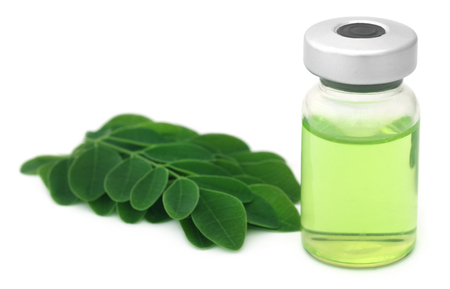 mulangay: Moringa leaves with extract in a vial over white background