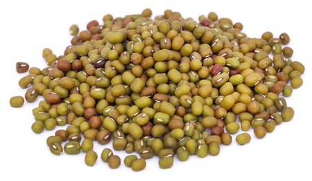 vigna: Mung bean over white background