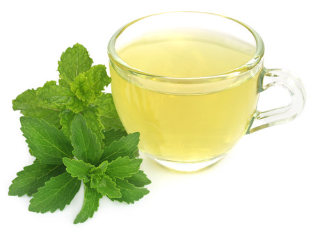 steviol: Herbal tea in a cup with stevia and mint leaves over white background