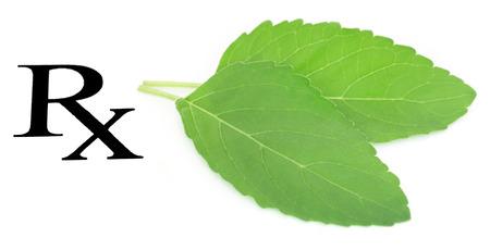Holy basil or tulsi leaves prescribed as medicine