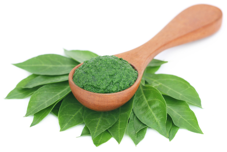 colorant: Ayurvedic henna leaves mashed and whole over white background