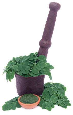 nebeday: Edible moringa leaves in a vintage mortar with ground paste over white background
