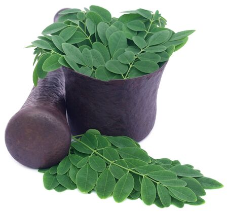 malunggay: Edible moringa leaves in a vintage mortar over white background