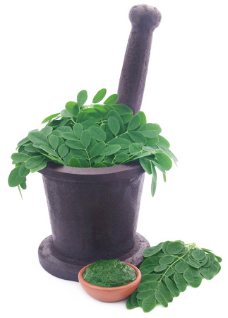 malunggay: Edible moringa leaves in a vintage mortar with ground paste over white background
