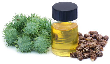 Castor oil with dry and green beans over white background Stockfoto