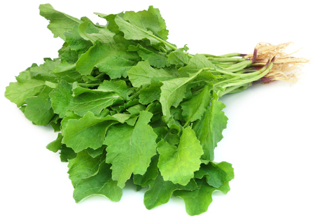 Edible mustard leaves as vegetable over white background Stock Photo