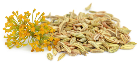 白い背景の上の花とフェンネルの種子 写真素材