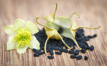 nigella seeds: Nigella flower with seeds on wooden surface