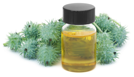 Castor oil with green beans over white background