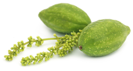 Fresh green medicinal haritaki fruits over white background Stok Fotoğraf