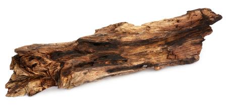 Decorative bogwood isolated over white background