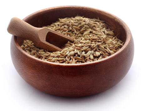 Fennel seeds in a bowl with scoop over white background