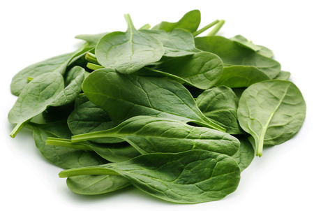 Fresh Spinach over white background