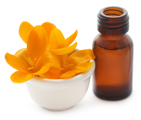 Yellow Crocus or Saffron with essential oil over white background