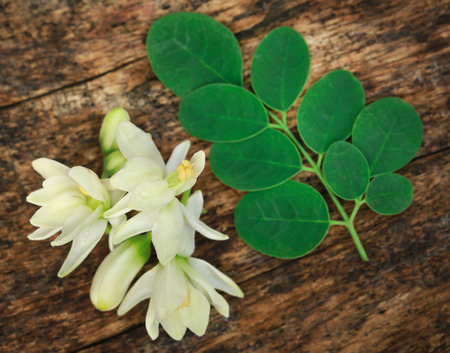 Medicinal moringa flower with green leaves in timber surface Stock Photo - 110634395