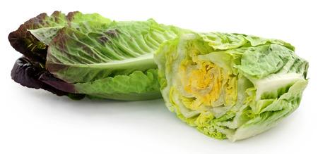 Fresh Romaine lettuce over white background Stockfoto