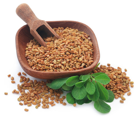 Fenugreek seeds with green leaves over white