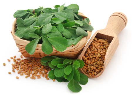 Fenugreek seeds with green leaves over white Stock Photo