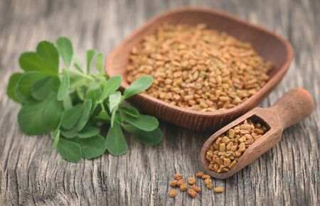 Fenugreek seeds with green leaves on wooden surface