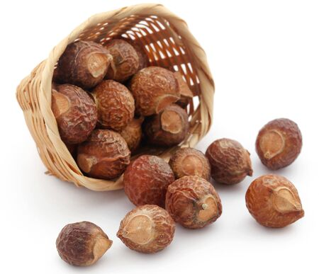 Sapindus mukorossi or Indian soapberry use in many pharmacological and cleansing purposes