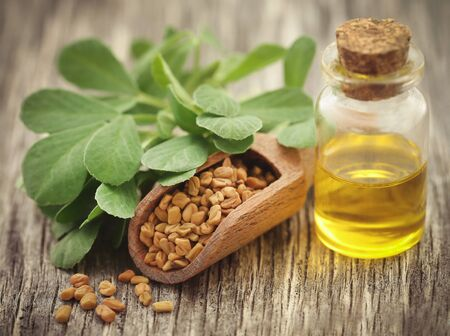 Fenugreek seeds with oil and green leaves on wooden surface