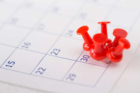 calendar date: Important date or concept for busy day