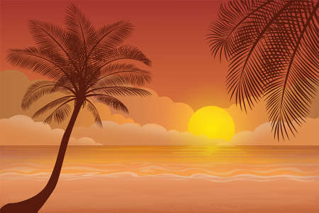 Sunset with palm tree L.