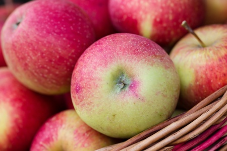 Organic Apples in a Basket outdoor   Stock Photo