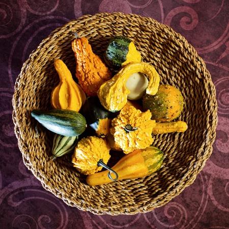 Autumn still-life with pumpkins Stock Photo