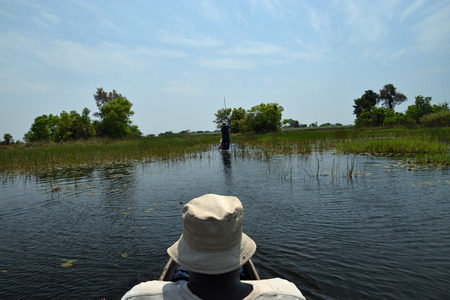 Okavango Delta, Botswana Stock Photo
