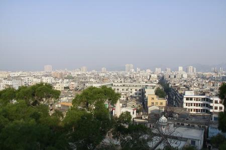 도시의 건물과 나무