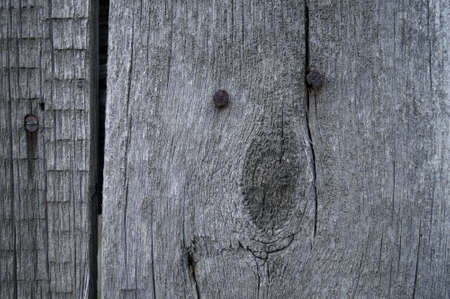 Old wood with rusty nails background texture 版權商用圖片