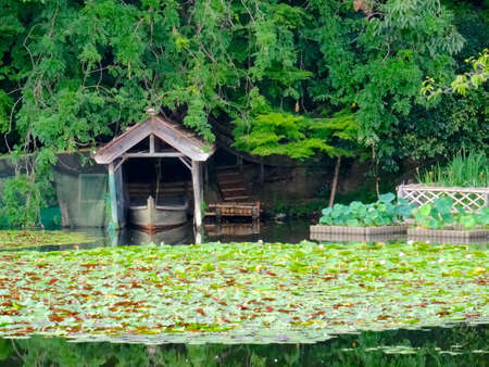 Beautiful view of docked rowing boat in a pond at the Ryoan-ji temple in Kyoto, Japan