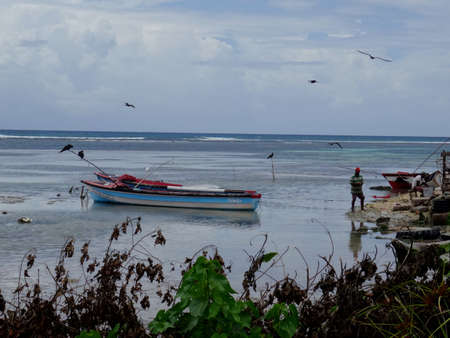 View of a Jamaican Bay near Montego Bay area, with some fisherman working and Frigate birds flying over docked boats