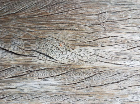 Close-up shot of weathered wood grain texture.
