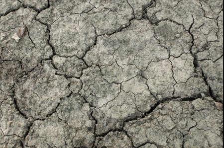 Texture of dry cracked soil Stockfoto