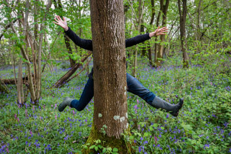 bluebell woods: Two people appearing to be one person jumping behind a tree in Bluebell woods, England, April