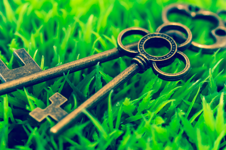 Key on green grass